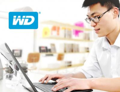 WD Green PC SSD